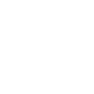 Academy of Certified Brain Injury Specialists
